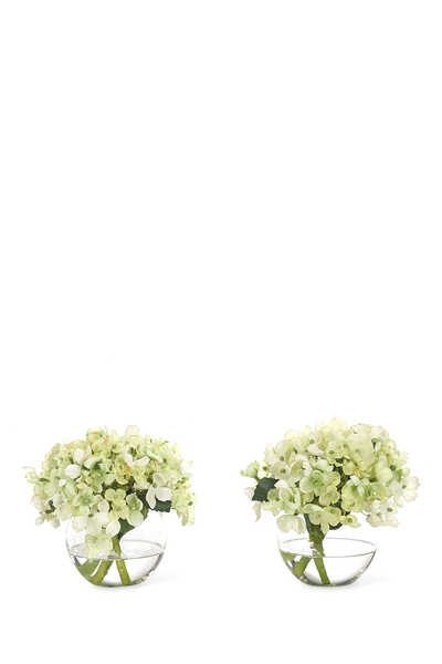 Hydrangea Flowers With Glass Bubble
