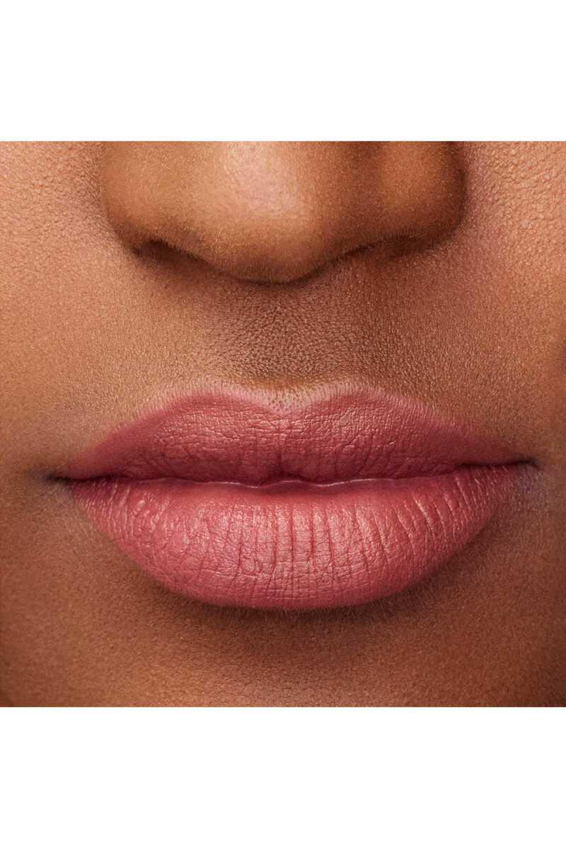 Lip Maestro 509 image number 8