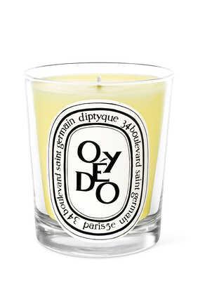 Oyedo Candle