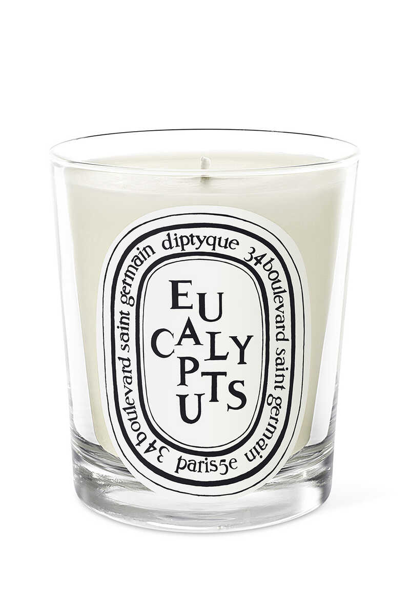 Eucalyptus Candle image number 1