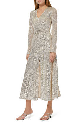 Sierra Sequin Embroidered Dress
