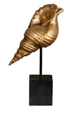 Conch Deco Piece