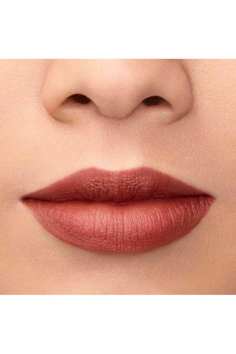 Lip Maestro 509 image number 24