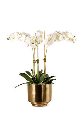 Artificial Orchid in Gold Vase