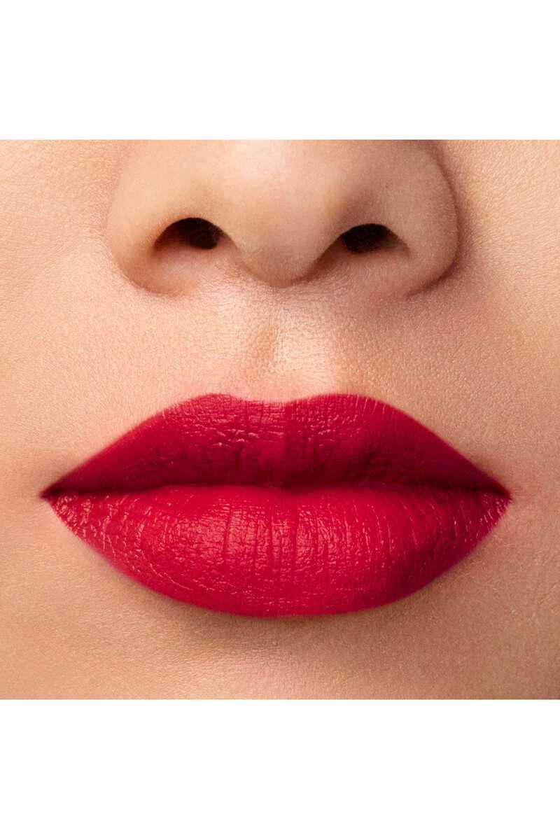 Lip Maestro 509 image number 20