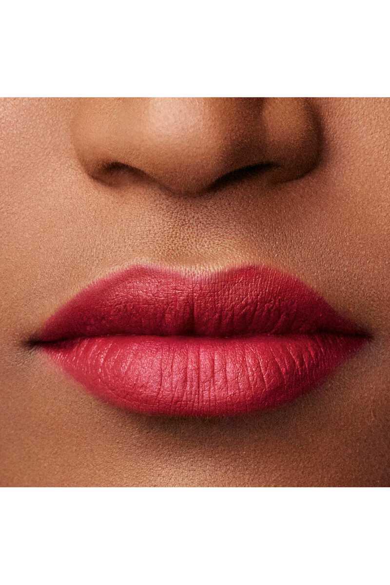 Lip Maestro 509 image number 19