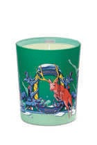 Xmas'20 Moonlit Fir Candle Limited Edition