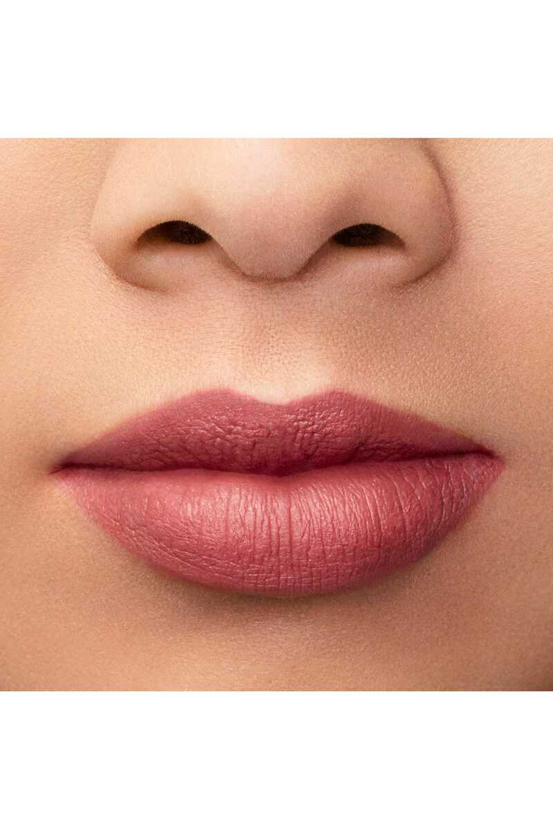 Lip Maestro 509 image number 10