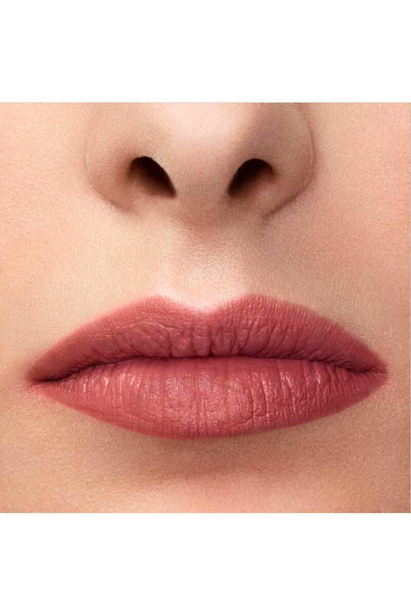 Lip Maestro 509 image number 9