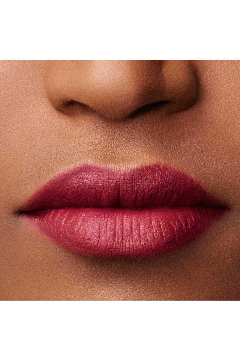 Lip Maestro 509 image number 15
