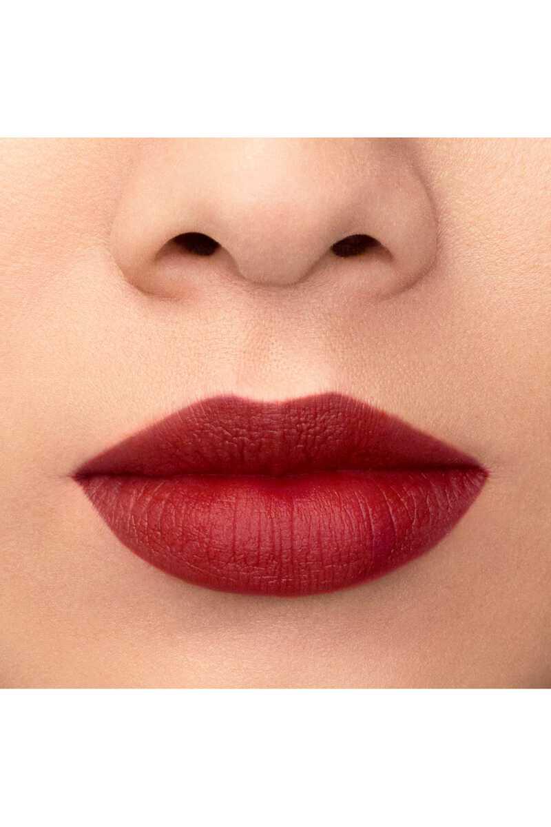 Lip Maestro 509 image number 28
